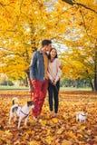 Romantisch paar die in openlucht in de herfstpark lopen met honden Stock Foto