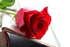 Romantisch Verhaal Royalty-vrije Stock Fotografie
