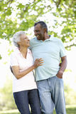 Romantische ältere Afroamerikaner-Paare, die in Park gehen Stockbild