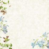 Romantische achtergrond 12x12 Royalty-vrije Stock Foto's