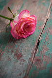romantische achtergrond Stock Afbeeldingen