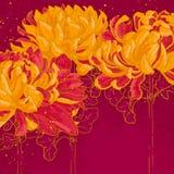 Romantische achtergrond met chrysant Stock Fotografie