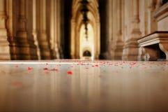 Romantische Ansichtblumenblumenblätter gespritzt auf dem Fußboden lizenzfreie stockbilder