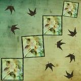 Romantische antike Rosen-Tapete Stockbild
