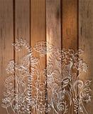 Romantische bloemachtergrond, natuurlijke krabbelillustratie Stock Foto's