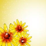 Romantische bloemenachtergrond stock illustratie
