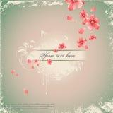 Romantische bloemenachtergrond Royalty-vrije Stock Fotografie