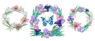 Romantische bloemeninzameling van kronen met vlinder voor uw ontwerp stock illustratie