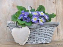 Romantische bloemenmand Stock Fotografie
