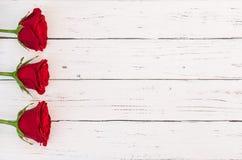 Romantische Blumen, rote Rosen auf weißem hölzernem Hintergrund für die Heirat oder Valentinsgruß-Tag Lizenzfreie Stockfotos