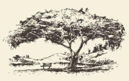 Romantische boom met bank getrokken schets Stock Afbeelding