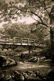 Romantische Brücke auf dem Fluss Lizenzfreie Stockfotografie