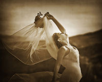 Romantische Braut 6 Stockfotos
