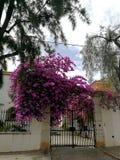 Romantische Fassaden von Süd-Portugal stockfotografie