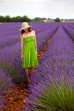 Romantische Frau im grünen Kleid und im Hut, die auf dem Lavendelgebiet steht Stockbilder