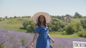 Romantische Frau im Hut macht Spaziergang auf dem Lavendelgebiet stock video