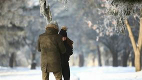 Romantische gang van een paar op een sneeuwpark in prachtig de winterweer stock videobeelden