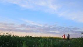 Romantische gang van twee aanbiddelijke minnaars met fietsen op het mooie groene gebied over de mooie hemel stock footage