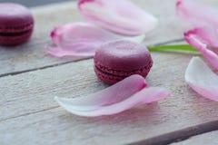 Romantische gevoelige samenstelling met roze bloemen en makaroncakes stock afbeeldingen