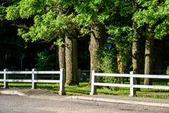 romantische grintweg in land onder blauwe hemel Stock Foto's