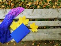 Romantische Herbstzusammensetzung Lizenzfreie Stockfotografie