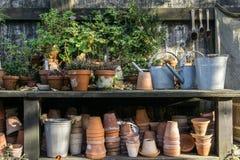 Romantische idyllische Betriebstabelle im Garten mit alten Retro- Blumentopftöpfen, -werkzeugen und -anlagen Stockbilder