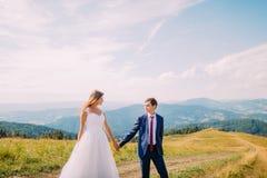 Romantische junge Braut und Bräutigam, die auf Spur über gelbem sonnigem Feld mit Forest Hills als Hintergrund geht Lizenzfreies Stockbild