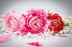 Romantische Karte mit Rosen, Kristallgirlande und Herzen Stockbild