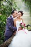 Romantische kusbruid en bruidegom Stock Fotografie