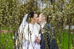 Romantische kusbruid en bruidegom in park Stock Afbeelding