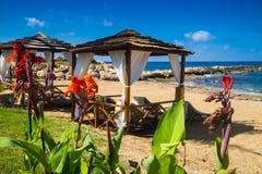 Romantische kustlijn met pergola's en bloemen stock foto's