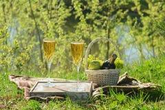 Romantische Lunch op Deken in Forest Side View royalty-vrije stock fotografie