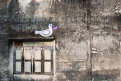 Romantische muur met witte duif op de vensterblinden in Phuket-Stad Stock Fotografie