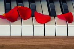 Romantische Muziek Royalty-vrije Stock Foto
