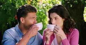 Romantische Paare, die Tee im Park trinken stock footage
