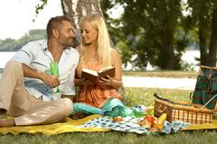 Romantische Paare am Heiratjahrestagspicknick Stockfotos