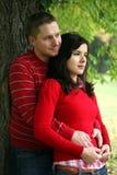 Romantische Paarserie Stockfotografie