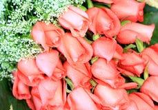 Romantische rosafarbene Rosen Stockbilder
