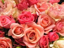 Romantische roze bloemen Royalty-vrije Stock Foto's