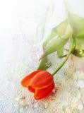 Romantische samenstelling met een rode tulp en kristalglazen Stock Afbeelding
