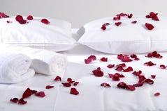 Romantische schöne rote Blumenblätter auf weißen Kissen mit weißen Tüchern Stockbild
