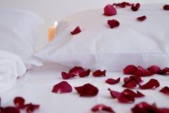Romantische schöne rote Blumenblätter auf weißen Kissen mit weißen Tüchern Lizenzfreie Stockfotografie