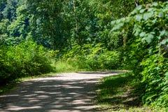 romantische Schotterstraße im grünen Baumwald Stockfotos
