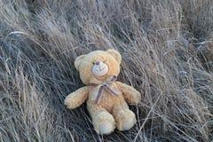 Romantische teddybeerescapist Stock Afbeeldingen
