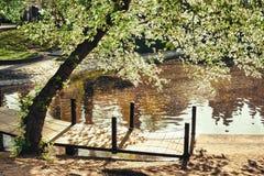 Romantische voetgangersbrug met schaduwen en kleuren stock afbeelding