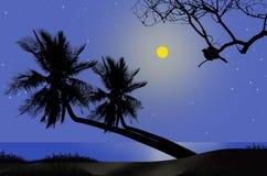 Romantische volle maannacht naast het overzees stock illustratie