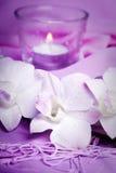 Romantische wellness Royalty-vrije Stock Afbeeldingen