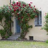 Romantische werf met deur met bloemen, Duitsland Stock Afbeeldingen