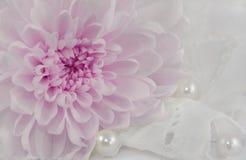 Romantischer abstrakter Hintergrund Stockfotos