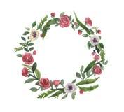 Romantischer Aquarellkranz, Blumen von Rosen in den Blättern, Frühlingsblumen stockfotografie